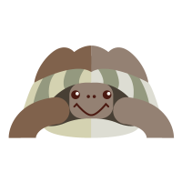 la-cuccia-tartarughe